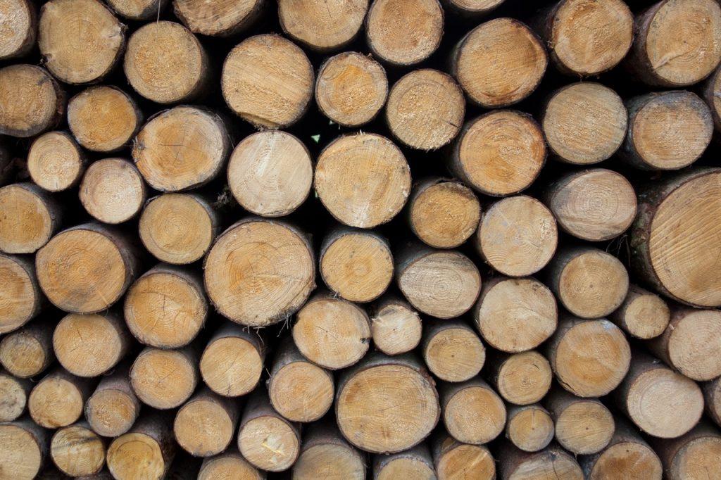 Langue de bois