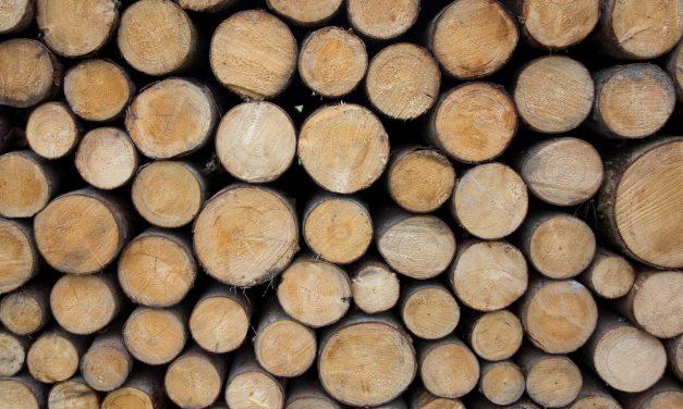 Tout ce que vous avez toujours voulu savoir sur La langue de bois