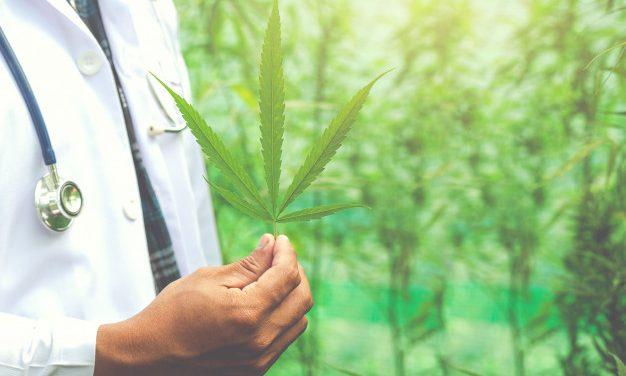 La résine de cannabis est-elle légale?